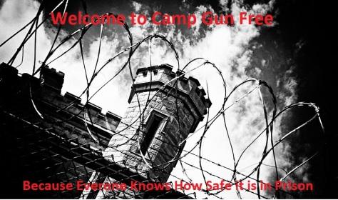 Camp Gun Free