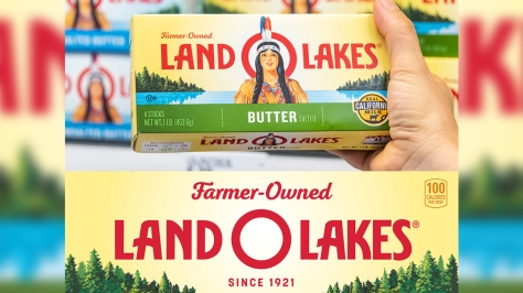 land o lakes took the indian but kept the land