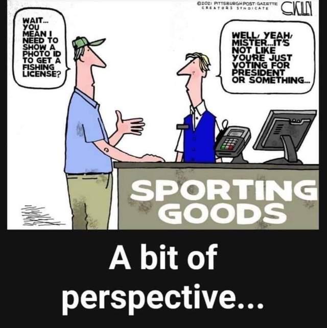 voter is perspective